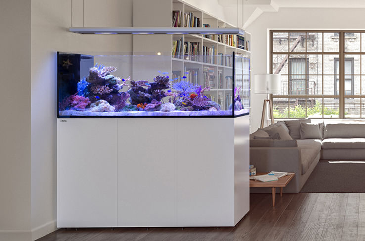 Peninsula P650 Deluxe Blanc Aquarium Meuble 4 Reefled Marinehome